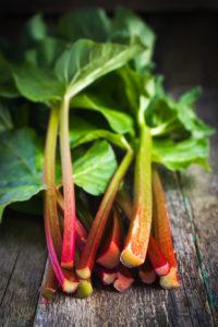 rhubarb-1